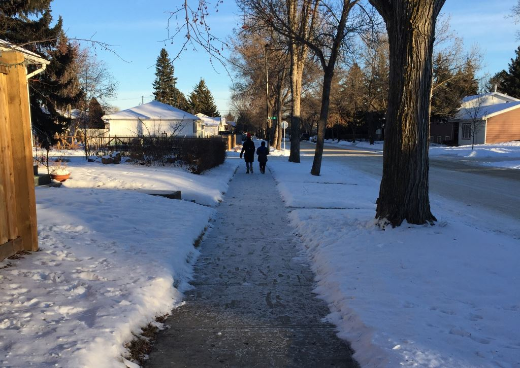 Fluffy snow + high standards = a noisy Edmonton winter