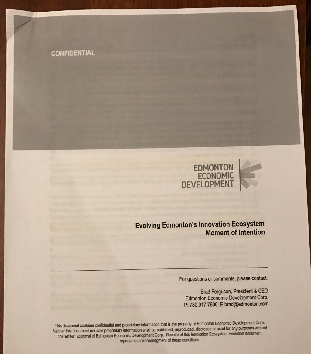 EEDC's Moment of Intention report