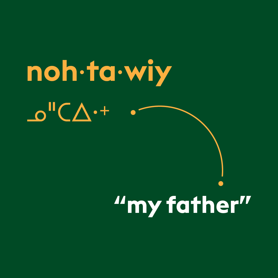 Cree word of the week: nohtawiy